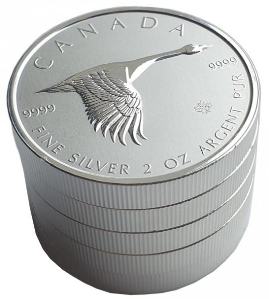 5 x 2 Oz Silber Canada Gans Goose 2020 Anlagemünze